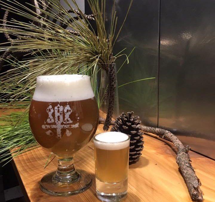 為什麼你該喝手工精釀啤酒?品酒人獨愛精釀啤酒的細膩關鍵